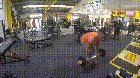 I'll just misuse gym equipment, WCGW?