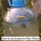 Man attempts to use a snake to filter water, an obvious result occurs
