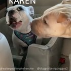 Karen being a bitch again