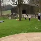 HMB while I show this people my skills on the trampoline