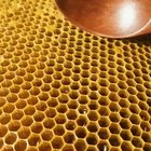 Scooping honeycomb