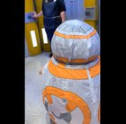 Disney Employee Ends Up in Tears over Little Girl's BB-8 Costume (With Sound)