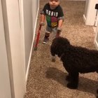 Little boy proudly shares his accomplishment with his dog