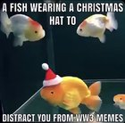 no more war, just fish