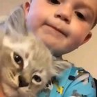 Kid speaks to the kitten.