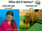 Who did it better? لنيحسول يناكل يم download xhamster