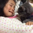 Don't cry little human, im here..